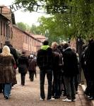 Train des 1000 - Auschwitz